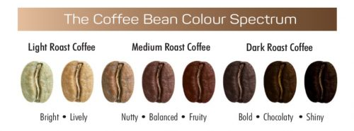 Coffee Bean Colour Spectrum